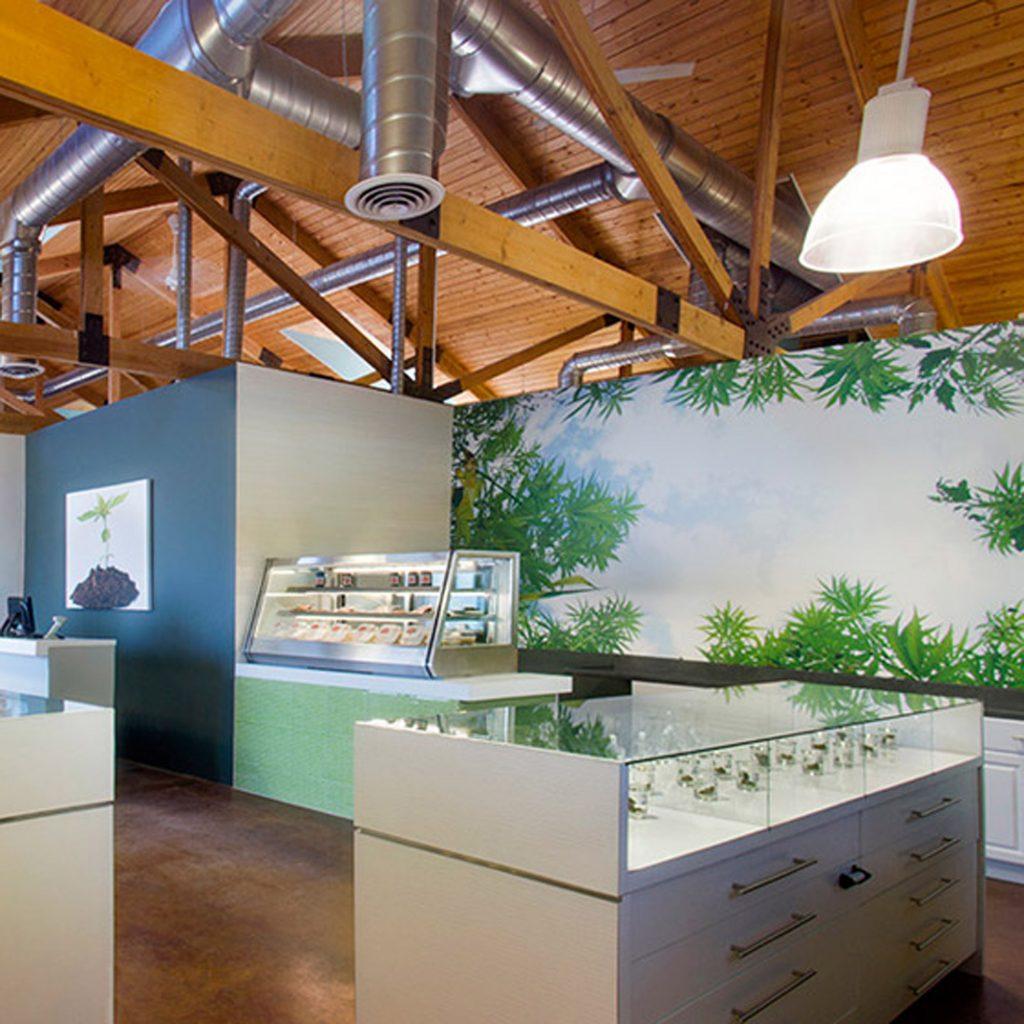 Marijuana design smoking weed five best roundup dezeen 2364 col 3 1024x1024