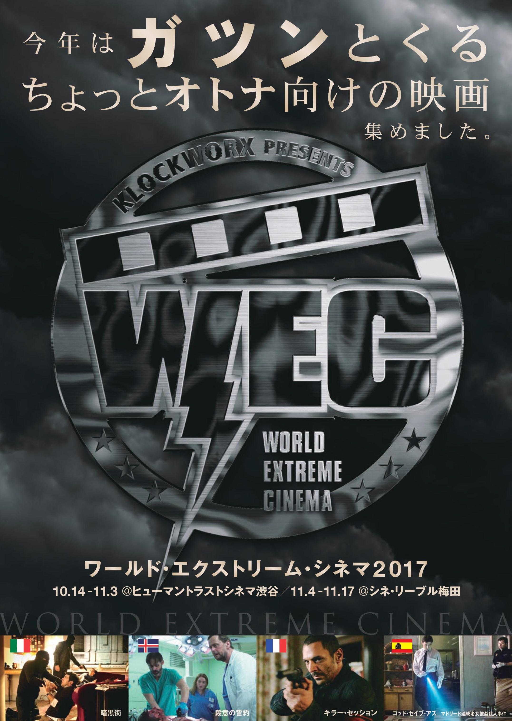 wec_チラシ表