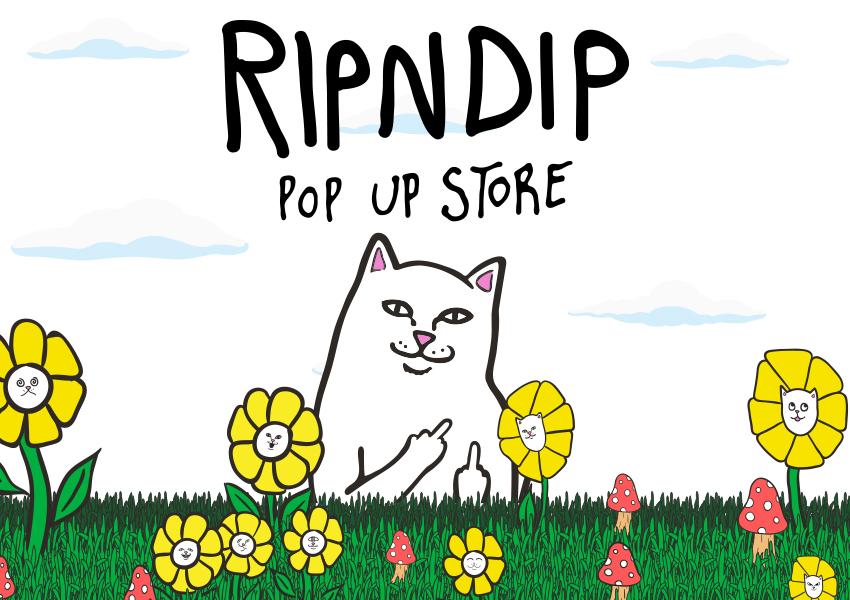 RIPNDIP POP UP_main
